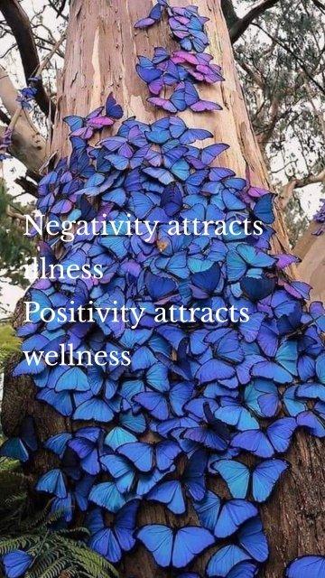 Negativity attracts illness Positivity attracts wellness