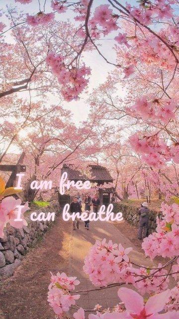 I am free I can breathe