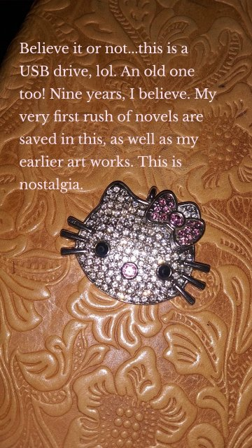 Believe it or not...this is a USB drive, lol. An old one too! Nine years, I believe. My very first rush of novels are saved in this, as well as my earlier art works. This is nostalgia.