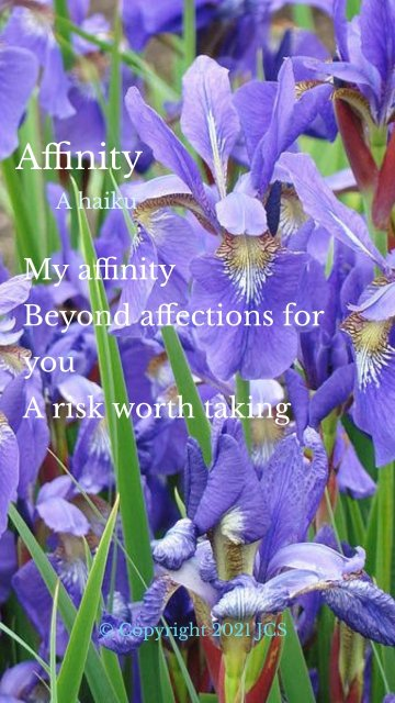 Affinity My affinity Beyond affections for you A risk worth taking A haiku © Copyright 2021 JCS