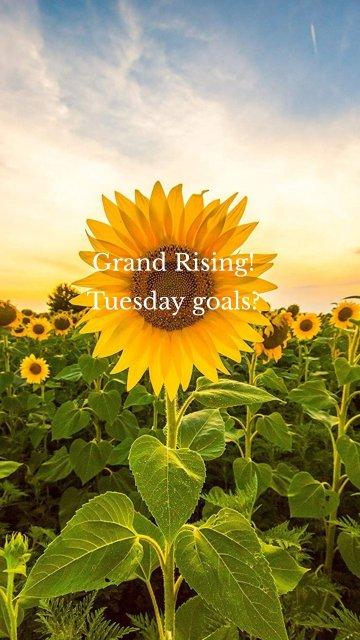 Grand Rising! Tuesday goals?