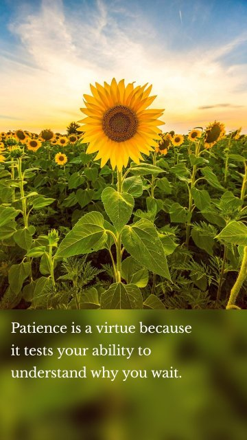 Patience is a virtue because it tests your ability to understand why you wait.