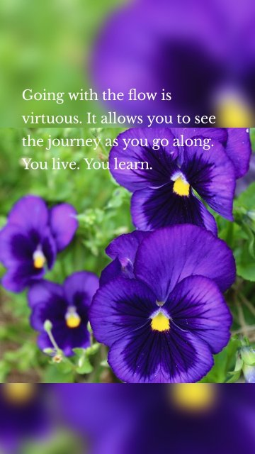 Going with the flow is virtuous. It allows you to see the journey as you go along. You live. You learn.