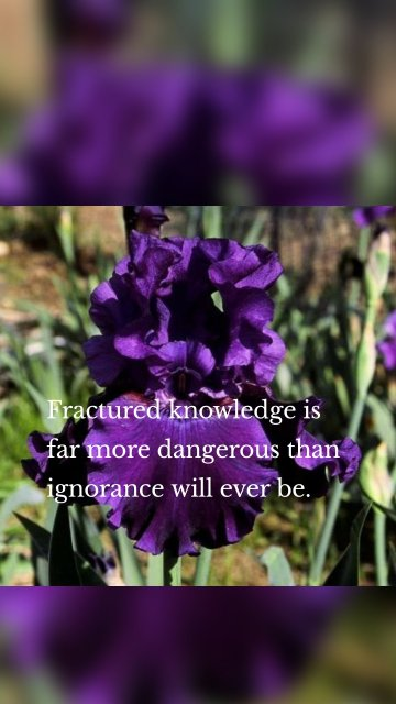 Fractured knowledge is far more dangerous than ignorance will ever be.