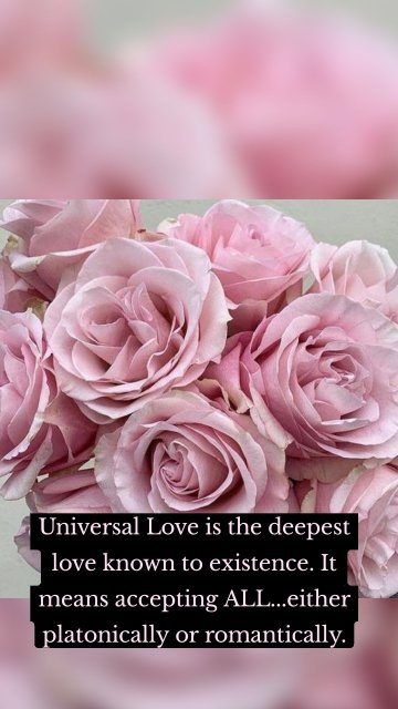 Universal Love is the deepest love known to existence. It means accepting ALL...either platonically or romantically.