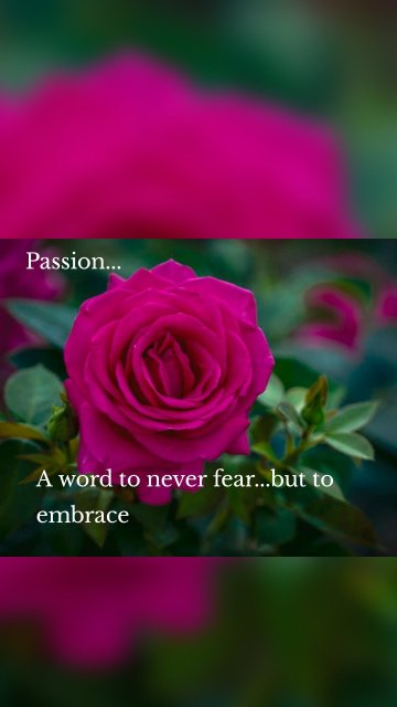 Passion... A word to never fear...but to embrace