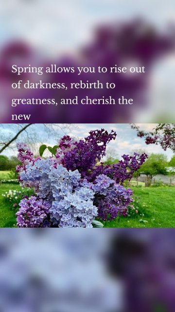 Spring allows you to rise out of darkness, rebirth to greatness, and cherish the new