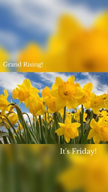 Grand Rising! It's Friday!