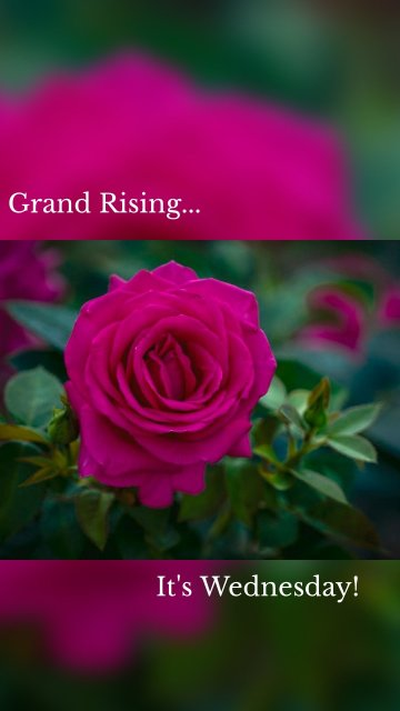 Grand Rising... It's Wednesday!