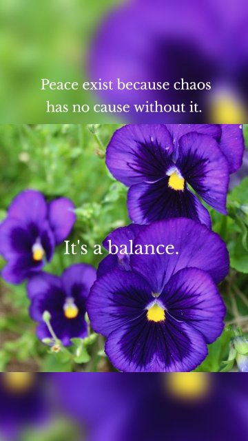 Peace exist because chaos has no cause without it. It's a balance.