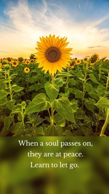 When a soul passes on, they are at peace. Learn to let go.