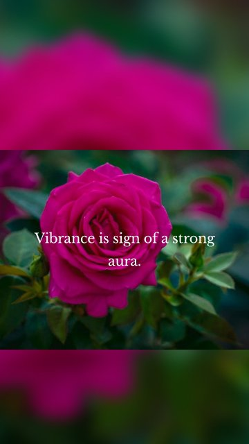 Vibrance is sign of a strong aura.