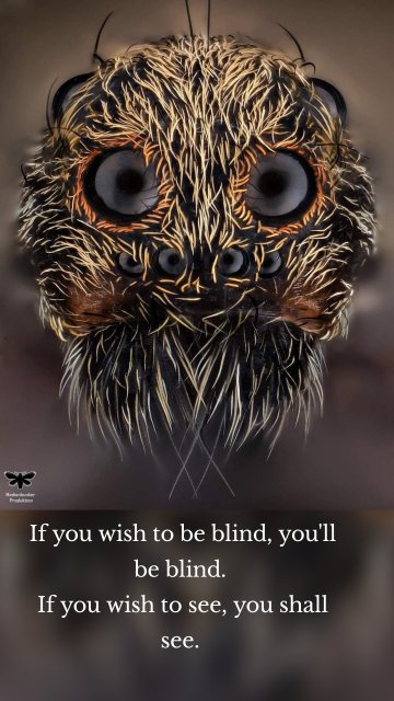 If you wish to be blind, you'll be blind. If you wish to see, you shall see.