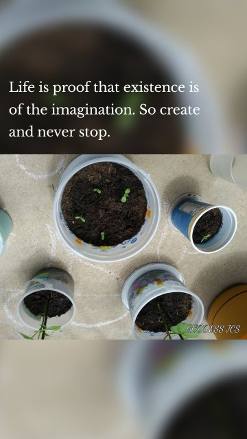 Life is proof that existence is of the imagination. So create and never stop.