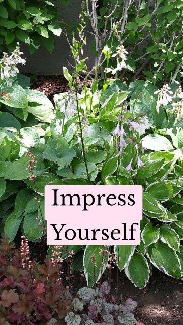 Impress Yourself