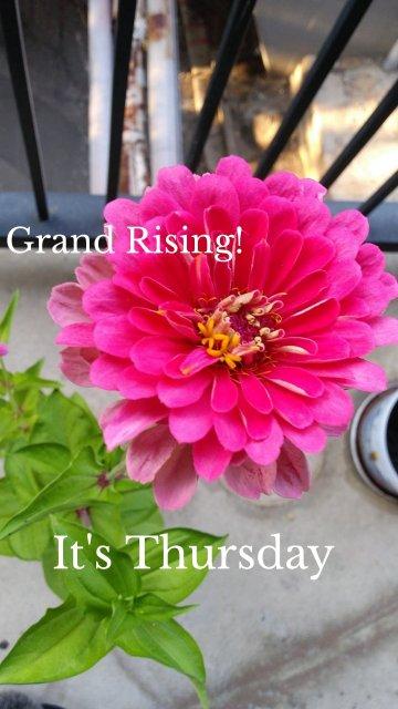 Grand Rising! It's Thursday