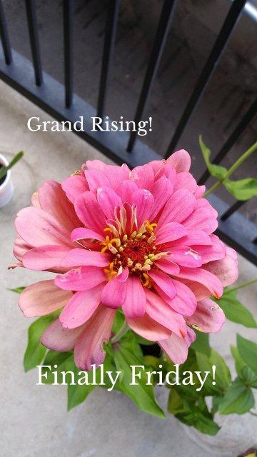 Grand Rising! Finally Friday!